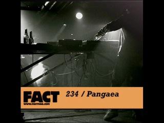 FACT Mix 234 - Pangaea