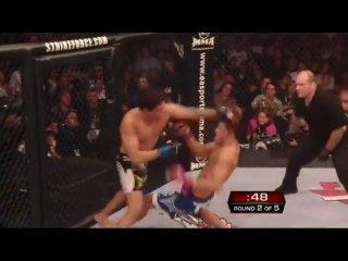 М-1 бои без правил MMA