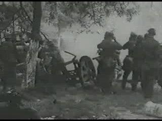 5-я танковая дивизия СС Викинг  в боях за Ростов