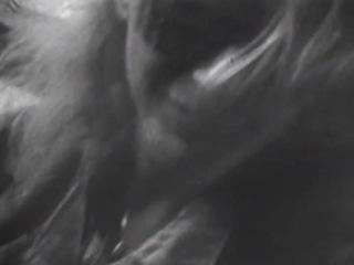Vixen - Edge Of A Broken Heart