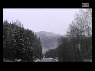 Подводная охота в Норвегии. Фильм Дениса Овчинникова.