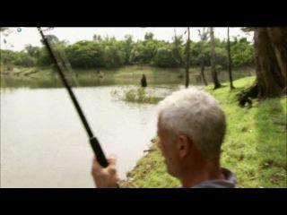 Речные монстры.   Рыбалка на арапайму