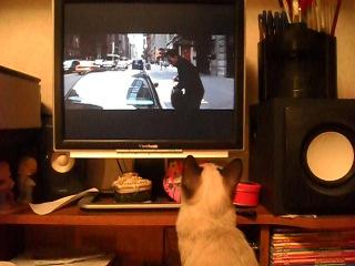 Амира смотрит фильм на компьютере