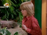 Все тип-топ или жизнь Зака и Коди | The Suite Life of Zack & Cody 2 сезон 28 серия