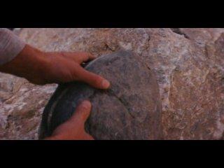 Непобедимый (фильм про самбо)