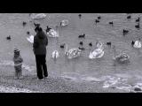 Favretto feat. Naan - Follow your heart