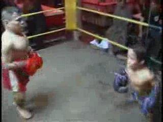 тайский бокс среди карликов