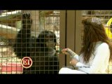 Michael Jackson's Sister La Toya Reunites with his Chimp Bubbles in New Doc
