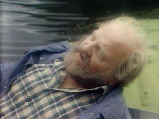Сериал Маленький бродяга 1 сезон 3 серия 1979