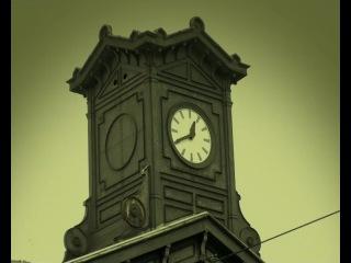 Букашки | Minuscule - Chenille des villes papillon des champs ( 3 сезон ) » Freewka.com - Смотреть онлайн в хорощем качестве