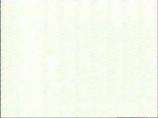 ТАКТ-новости. Николай Изюмченко (открытый чемпионат по экстремальному бегу «Слобожанский iспит-2010» в Харькове (Украина))