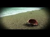 Criss Blaziny - 7 August   feat. Iza si Dj. Undoo (prod. Adapter)