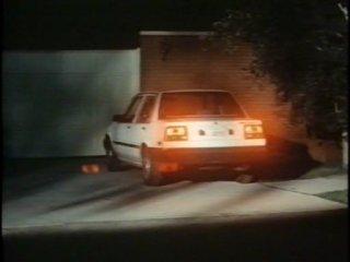 Чайна О'Брайен 2 / China O'Brien II / 1991 (Синтия Ротрок)