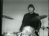 Electric Prunes- I Had Too Much To Dream (Last Night)