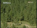 ТУТ БУРЯТЫ CCTV - Едем в Китай - Хулунбуирский аймак (Внутренняя Монголия)