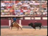 Лошадь за 6 000 000 долларов