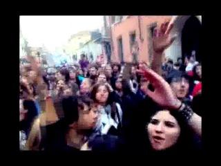 Sciopero contro riforma Gelmini (Mantova)