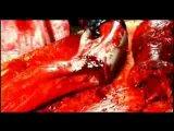 Bestial Devastation-Splatter Mania