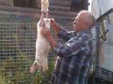 поехали резать кроликов