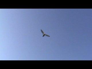 Мой первый полет на дельтаплане (ч.2 взлет)!=))