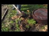 Счастливые люди: Год в тайге. Фильм 4 - Лето (2008) | «Эффективные Технологии Жизни»