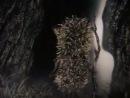 Ежик в тумане - Юрий Норштейн - Союзмультфильм (1975)