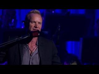 Sting -