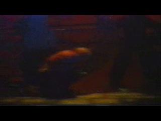 Фрагменты мюзикла Нотердам де Пари с Теоной Дольниковой, Антоном Макарским и Сергеем Ли часть 4
