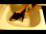 Пытка душем