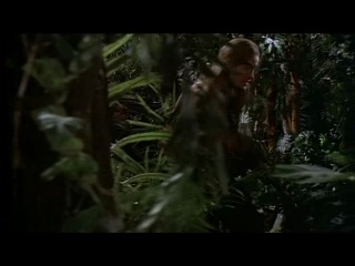 АМАЗОНКА ПИТЕРА БЕНЧЛИ | AMAZON | 19 СЕРИЯ
