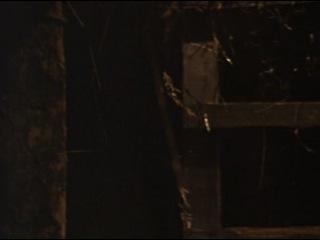 Чёрная курица, или подземные жители (1980)