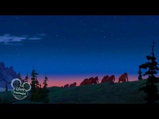 Братик ведмедик (2003) (укр)