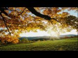 Temple One feat. Hannah Ray - Autumn Leaves