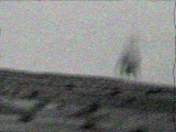 Nine Inch Nails - Year Zero Teaser Trailer