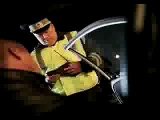 Нападение стаи волков на пост ДПС (трасса М23) видео из машины