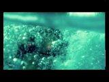 Наталья Могилевская - Морские звезды...(..Но если любовь - это море, то мы морские звезды! Осторожно! Нас не любит