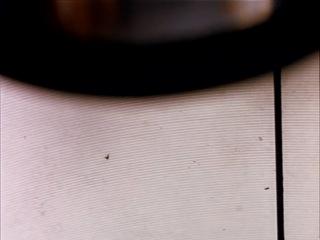 Парниковый Эффект (реж.В.Ахадов в рол.Е.Полякова,А.Якин,А.Коршунов,И.Лосева,П.Семенихин,А.Фроловцева,Е.Харланов,А.Халимон)