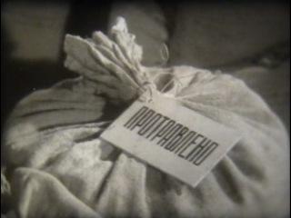 ОТДЕЛЫ РАСТЕНИЙ. Грибы паразиты / 1971