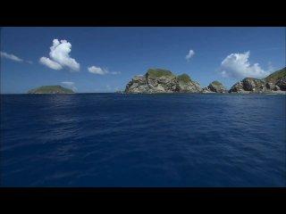 Pink Floyd - Marooned (неофициальное видео) HD