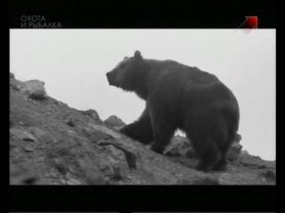 Особенности охоты на Руси. Эпизод 17. Охота на медведя.