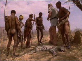 Жизнь животных. Плотоядные.Леопард