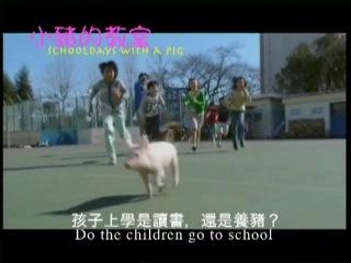 Класс, в котором был поросёнок (Buta ga ita kyôshitsu / School Days with a Pig)
