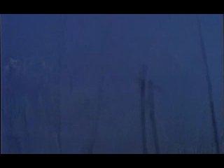 Doro - Für Immer (клип)