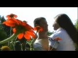 Братья Борисенко - Звездный берег (клип)