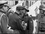 Вандал – Дед мой был Штурмфюрер СС! (1)