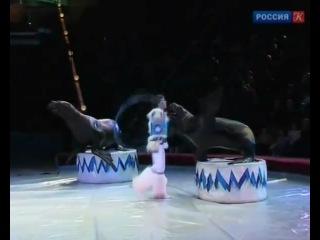Сюжет про Василия, передача Вадима Верника