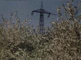 Восстановление Сталинграда после Великой Отечественной войны.