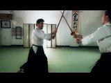 Shinkendo Japanese Swordsmanship and Aikibujutsu Shokai Video