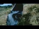Paul Oakenfold feat. Carla Werner - Southern Sun