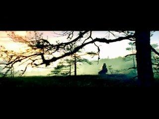 Apocalyptica feat. Ville Valo (HIM) & Lauri Ylönen (The Rasmus) - Bittersweet